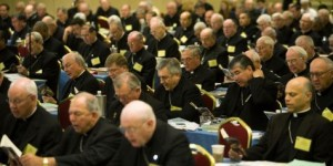 U.S. Conference of Catholic Bishops at their 2015 General Assembly, held in St. Louis, Mo.  (Photo: AP)